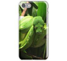 Slithering iPhone Case/Skin
