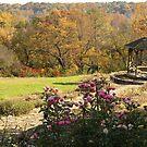Maymont garden by ANNABEL   S. ALENTON