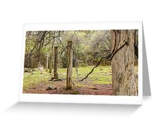 Worn Fence Posts - Hill End Greeting Card