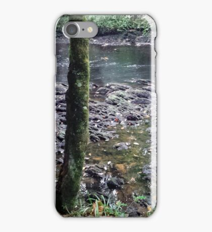 British Woodland in Autumn - River Bank Rocks, with Tree iPhone Case/Skin