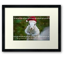 White squirrel Christmas Framed Print