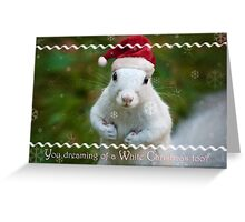 White squirrel Christmas Greeting Card