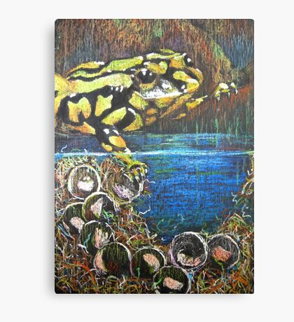Australian  Corroboree Frog from a Pastel Painting  Canvas Print