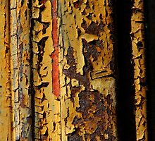 Chipped Paint & Rust: Beautiful by TAUDREY