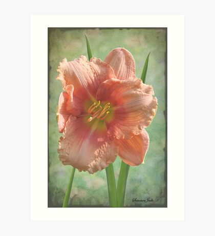 Treasure Today ~ in Softest Pastels Art Print