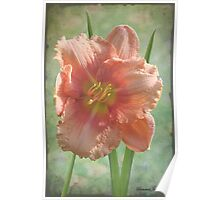Treasure Today ~ in Softest Pastels Poster
