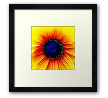 Colour Of Life XXIV [Print & iPad Case] Framed Print