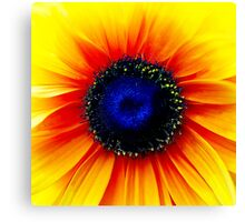 Colour Of Life XXIV [Print & iPad Case] Canvas Print