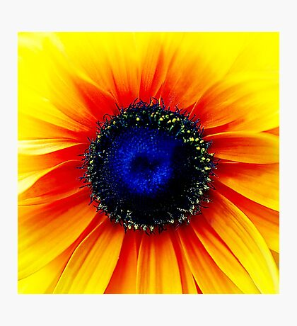 Colour Of Life XXIV [Print & iPad Case] Photographic Print