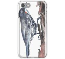 White-throated Treecreeper iPhone Case/Skin