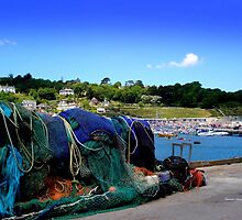 Harbour Life in Lyme Regis by Charmiene Maxwell-batten