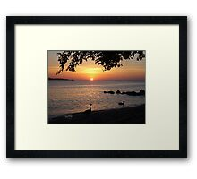 Let the beauty that surrounds us fill our heart with hope in the New Year. Framed Print