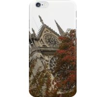 Cruising Down the Seine River and Catching a Glimpse of Notre-Dame de Paris iPhone Case/Skin