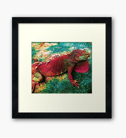 DRAGONS ARE NOT A MEDIEVAL MYTH Framed Print