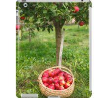 Full basket near apple tree iPad Case/Skin