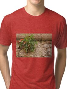 Stonewall Wonder ©  Tri-blend T-Shirt