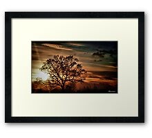 What A Difference A Day Makes Framed Print