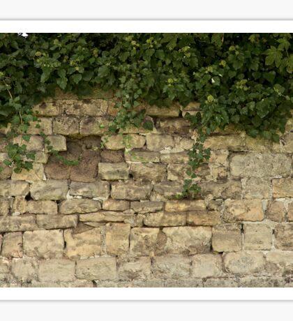 Romancing The Stone ©  Sticker