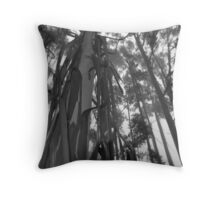 The Witch's Screams Echoing Through the Tree Tops Throw Pillow