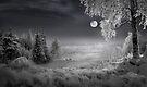 Silent Moon by Igor Zenin