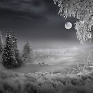 Silent Moon by Igor Zenin