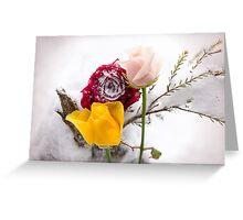 Sorrow, Love and Friendship Greeting Card