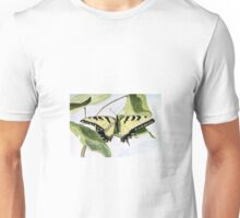 Male Eastern Tiger Swallowtail Unisex T-Shirt