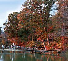 Howard's Dock by Eileen McVey
