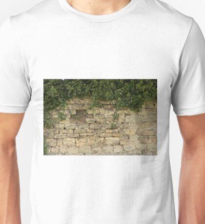 Romancing The Stone ©  Unisex T-Shirt