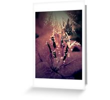 Fairy and flower Greeting Card