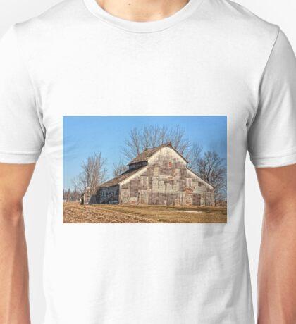 Peeling Layers Unisex T-Shirt