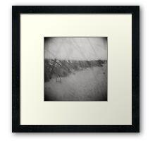 SC Lowcountry VI Framed Print