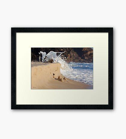 Alive and Dancing Framed Print