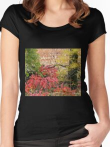 Country Blaze Women's Fitted Scoop T-Shirt