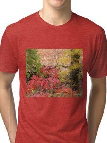 Country Blaze Tri-blend T-Shirt