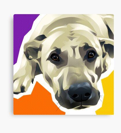 TOBY - Labrador Retriever Canvas Print