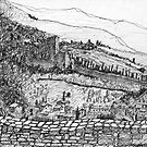 Italy-The view from the Citadel of Assisi by James Lewis Hamilton