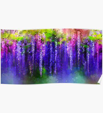 Beautiful purple hanging wisteria Poster