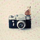 Camera Kitty by Caroline Mint