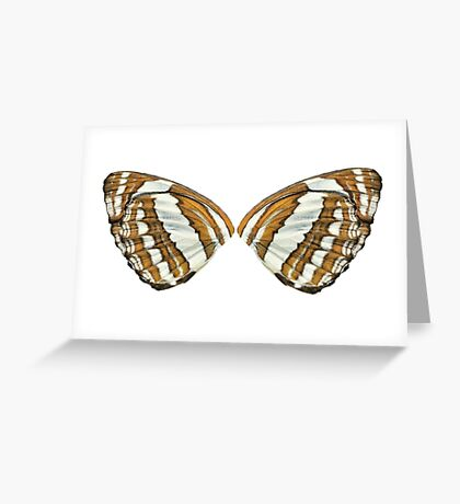 Float Like a Butterfly Greeting Card