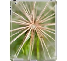 Heart Of A Dandelion iPad Case/Skin