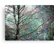 The Aura of Trees Canvas Print