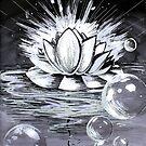Waterlily by studinano