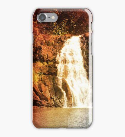 Cleanse iPhone Case/Skin