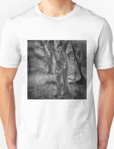 I Was A Different Person T-Shirt