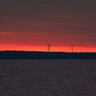 Windmills at Dawn by Mary Ann Reilly