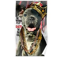 Notorious P.U.P. Puppy Poster Poster