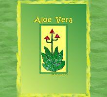 Aloe Vera by thefamily