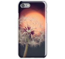 Sunset Dandelion iPhone Case/Skin