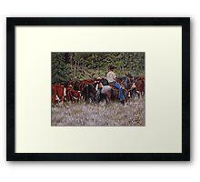 Living The Dream, Moving The Herd Framed Print